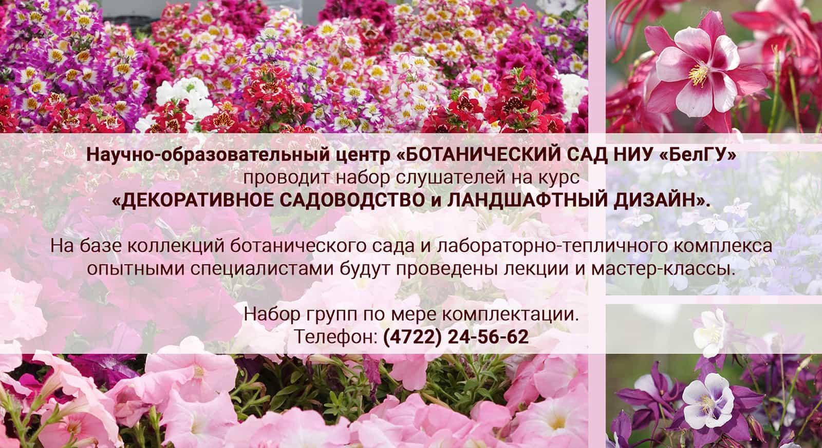 НОЦ «Ботанический сад НИУ «БелГУ» приглашает всех желающих посетить курсы «Декоративное садоводство и ландшафтный дизайн»