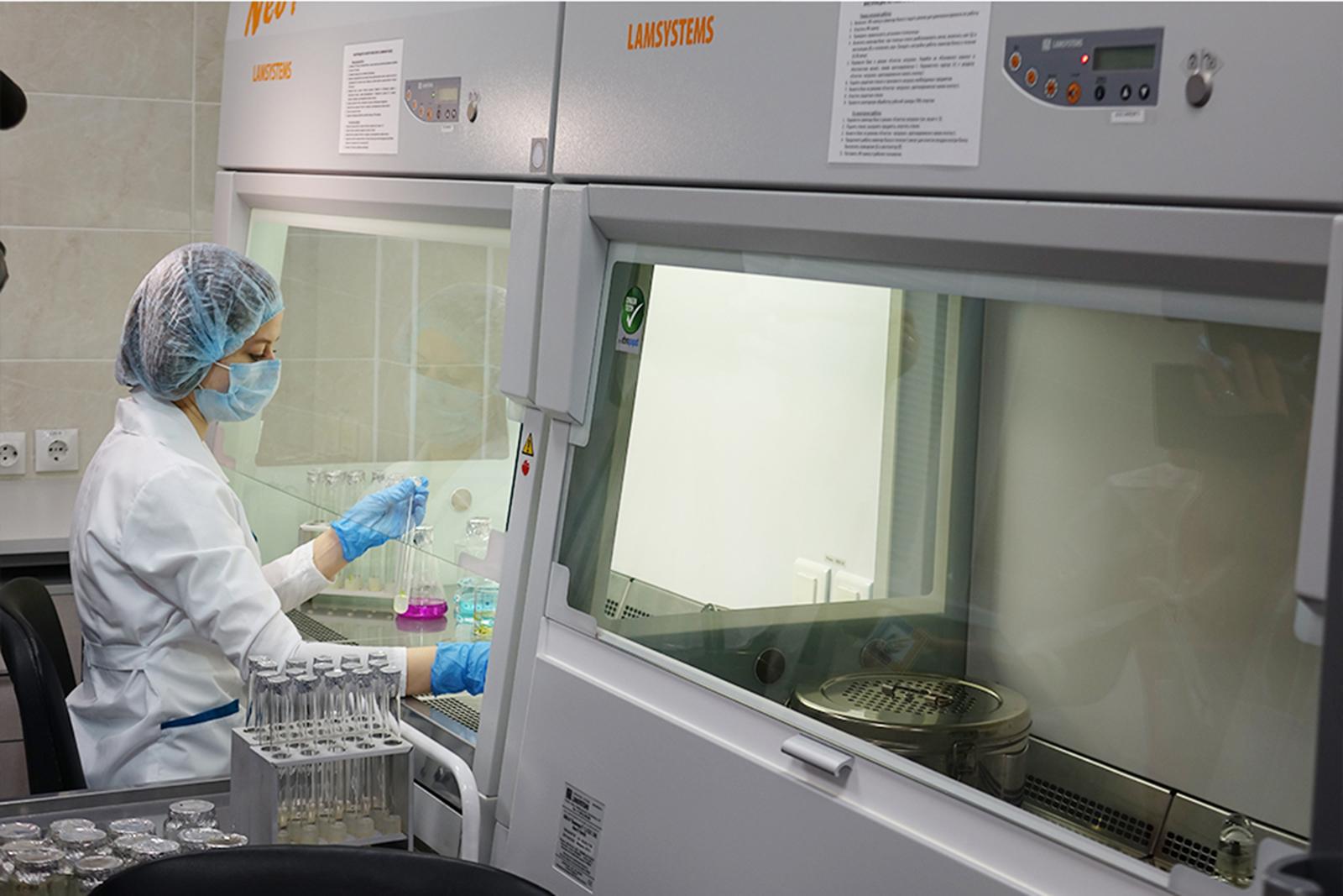 Биотехнологи НИУ «БелГУ» получили качественный посадочный материал сортовой сирени